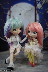 Growing Up is Hard to Do (twilitize) Tags: camera girls cute girl beautiful beauty canon cool doll dolls good girly awesome adorable cutie pop adventure groove pullip dolly popular angelica darling pullips dollphotography canonphotography pullipphotography