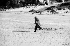 Libert [Explored on 2016 April 03] (LACPIXEL) Tags: blackandwhite france blancoynegro beach outside libertad freedom nikon flickr child noiretblanc sable free bretagne playa arena libert nikkor fx enfant nino extrieur plage libre torun correr perrosguirec courrir d3s nikonfrance lacpixel