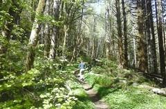 tillamookhike07 (jcravens) Tags: oregon forest hike campground galescreek stateforest tillamookforest