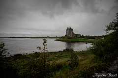 Dunguaire Castle (Aymeric B.) Tags: voyage trip ireland irish cliff castle galway architecture eau eire journey extrieur btiment deau moher cours irlande dunguaire