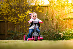 Amelia on her trike (T_J_G) Tags: camera nikon flash 85mm off ocf d750 softbox trigger x1 nikonian 18g strobist godox tt685n
