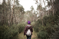 Follow The Leader (dan_walk) Tags: park camping brown green girl forest walking outside outdoors bush buffalo mt purple hiking australia victoria hike adventure explore national beanie tramping trecking exploremore