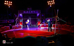 Circo Raluy-Circ Raluy-Zirkus Raluy (Hunter.) Tags: barcelona show lighting public canon luces spain track colours circo box circus clown report champion colores seats ambient pblico hunter 1020mm payaso pista palco ambiente espectculo campen reportaje butacas circoraluy guitarraacstica armnica canon450d circusraluy familiaraluy familyraluy acousticsguitar