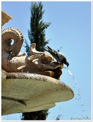 DSC_0346 (Gianluigi Pintus Photography) Tags: costa marocco crociera spagna lisbona portogallo cadice tangeri