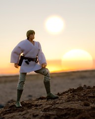 IMG_2967 (k.d.sword2121) Tags: toys starwars actionfigures lukeskywalker anewhope toyphotography acba originaltrilogy actionfigurephotography starwarsblackseries acbafam acbaglobal