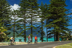 Cycling by - Lord Howe Island (NettyA) Tags: road trees water cycling cyclists transport tourists bicycles day5 unescoworldheritage lordhoweisland 2016 lhi norfolkpines mtgower lordhoweforclimate