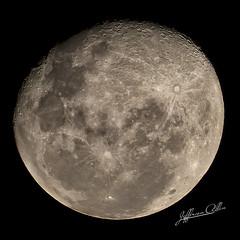 Moon (Jefferson Allan - Photographer) Tags: macro natureza infrared paisagens fotografiacampinas empilhamentodefoco jeffersonallan fotografojeffersonallan
