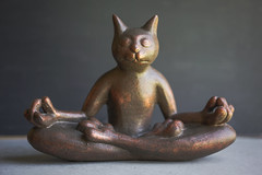 Cat Meditating Statue (hannah.winge) Tags: black statue bronze cat dark happy meditate peace gray lifestyle peaceful happiness minimal meditation spirituality figurine spiritual simple decor chill mellow neutral
