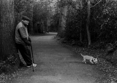 Taking a breather (adrian.sadlier) Tags: man film walking westie elderly resting malahide fujineopan400 nikonf5