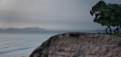On the edge (kud4ipad) Tags: ocean sky panorama mist plant tree peru skyline landscape island lima edge miraflores 2013