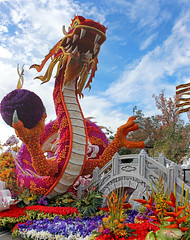 Dragon in Color (rgb48) Tags: flowers composite group pasadena stitched floats 2016 tournamentofrosesparade singpoli