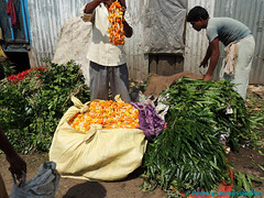 02 CALCUTA 22-calcuta-mercado-de-las-flores-2 (viajefilos) Tags: india pedro jaume calcuta viajefilos