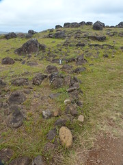 P1710711 Orongo, Easter Island, Chile (7) (archaeologist_d) Tags: chile easterisland archaeologicalsite orongo