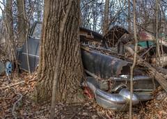 DSC08599.ARW-01 (juice95m3) Tags: abandoned rust vintagecar automobile junkyard oldcars classiccars