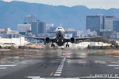 Itami Airport 2016.1.22 (5) JA66AN / ANA's B737-800 (double-h) Tags: airplane ana b737 itamiairport  itm osakaairport b737800   rjoo   inagawa thebankofinagawariver extenderef2xiii ef300mmf28lisiiusm ja66an eos7dmarkii