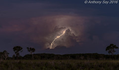 Sunset leaps   #weather #lightning #storm #sunset #australia #Ntaustralia #worldweather (Anthony Say) Tags: sunset storm weather australia lightning worldweather ntaustralia