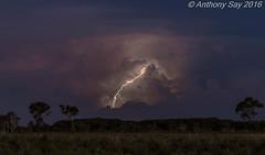 Sunset leaps   #weather #lightning #storm #sunset #australia #Ntaustralia #worldweather (Anthony Say) Tags: sunset storm weather australia lightning worldweather ntaustralia