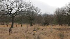 Dove Stone Reservoir (dannyjohnryder) Tags: uk canon eos countryside unitedkingdom f14 sigma 24mm greenfield canoneos lanscape dg canondigital sigmalens hsm a 700d canon700d canoneos700d eos700d sigma24mmf14dghsma