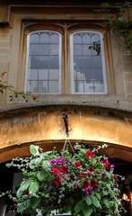 LACOCK (toyaguerrero) Tags: uk inglaterra england english heritage architecture rural cottage harrypotter nationaltrust britian prideandprejudice quintessential englishness naturalset maravictoriaguerrerocataln toyaguerrero