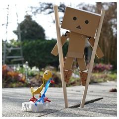 Danbo on stilts (steffi's) Tags: japan toy duck manga merchandise ente spielzeug stilts figur stelzen yotsuba danbo wellpappe objectphotography danbooru danboard kiyohikoazuma  kartonmnnchen danb kartonschachtelroboter