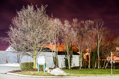 DSC_5286 (nickatkins) Tags: longexposure nightphotography trees light sky tree night lights nightshot nighttime nightshooting nighttimephotography