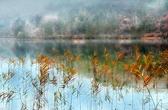 harmony of nature (Weirena) Tags: nature reflections austria landscapes october europe lakes wallart zen fineartphotography lakescape langbathsee weirena ireneweisz