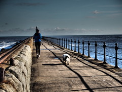 Lagging Behind (davidmdarbyshire) Tags: dog sports newcastle pier olympus runner tynemouth 2016