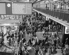 Lucerne Railway Station, Central Switzerland (jag9889) Tags: blackandwhite bw house building monochrome station architecture modern train schweiz switzerland europe suisse suiza swiss luzern railway indoor terminal alpine svizzera lucerne ch 2016 innerschweiz lozrn zentralschweiz centralswitzerland stadtluzern kantonluzern cantonlucerne suizra jag9889 20160127