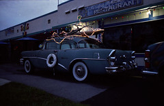 The Coolest 56 Buick (tomyb64flick) Tags: old film car vintage buick special iso 800