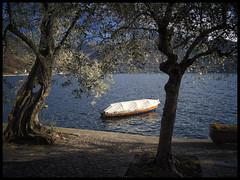 Au repos (E Starck) Tags: lake landscape lago italia lac olympus panasonic monte paysage italie isola iseo m43 em5