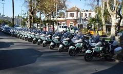 GUARDIA_CIVIL_DE_TRAFICO (DAGM4) Tags: espaa sevilla andaluca spain espanha europa europe police seville espana espagne polizei gc espagna polis polizia politi politie espainia guardiacivil espanya polica policie spanishpolice