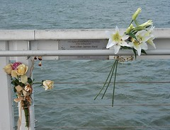 Flowers for Mum (mikecogh) Tags: flowers plaque dead jetty mother mum ashes jeanward wellingtonpoint