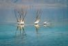 Life In The Dead Sea (xnir) Tags: landscape israel nir xnir nirbenyosef