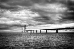 Day 346/366 ... The Great Belt Bridge (Bo Hvidt) Tags: blackandwhite bw monochrome blackwhite nik 365 storebælt xt1 silverefex thegreatbeltbridge bohvidt nikcollection fujifilmxt1 xf1024mm fujinonxf1024mmf4rois
