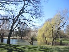 Im Volkspark Mariendorf, Berlin, NGID404692259 (naturgucker.de) Tags: naturguckerde cwolfgangkatz 915119198 92636685 865714930 ngid404692259