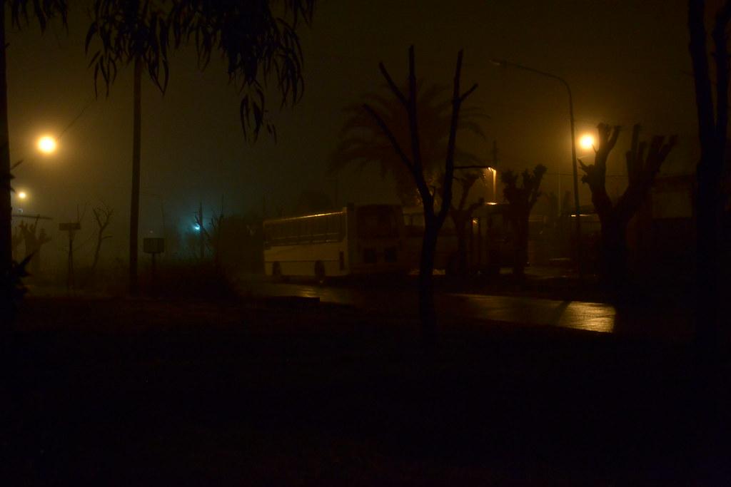 Noche y niebla online dating