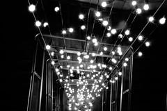 steps and bulbs (primemundo) Tags: stairs lights lightbulbs stairway bulbs goingdown