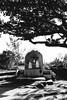 Cagsawa Ruins, Philippines (The Dame of all Trades) Tags: travel blackandwhite nikon philippines landmark filipino cagsaua lightroom pacificislands cagsawaruins travelphotography dallasphotographer kasawa d3100