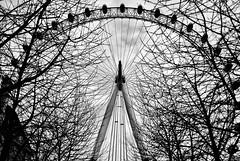 Round And Round Like A Horse On A Carousel (○gus○) Tags: nikond7000 200mm ƒ28 11000 london londra londoneye ferriswheel ruotapanoramica carousel biancoenero blackandwhite blancoynegro bn monochrome ʂ