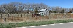 Central Nebraska Farm (Ravenna, Nebraska) (courthouselover) Tags: animals landscapes nebraska cattle cows ne ravenna buffalocounty