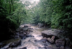 Dunloup Creek (joeldinda) Tags: vacation tree film water rock creek forest river landscape woods nikon kodak july rapids westvirginia scanned states negatives n90 meijer nikonn90s newrivergorge thurmond n90s 3115 gold800