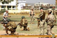 Entrenamiento Eq OE a 33 Rg Para-Commando (EMAD Espaa) Tags: mali bamako ttf eutm trainingtaskforce 33rdparargt missioncommandereutm