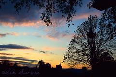 Serenidad (suominensde) Tags: barcelona sunset sky espaa cloud plant tree landscape spain outdoor dusk catalonia cielo serene lantern nube catalua puestadelsol linterna sereno nikond5300