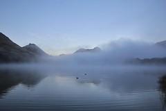 Moke Lake (PalmyLisa) Tags: morning newzealand fog early ducks queenstown benlomond lakewakatipu mokelake