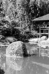 Peace behind the street (Go-tea) Tags: street wood urban bw white black reflection water canon garden eos japanese 50mm pagoda blackwhite rocks quiet peace outdoor bamboo silence zen toulouse bnw 100d