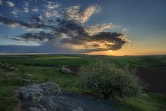 Thringer Becken (Rainer Schund) Tags: nature clouds landscape spring nikon sonnenuntergang natur himmel wolken landschaft cloudporn hanami kirschblte kirschbaum thringer becken nikond700 naturemasterclass natureexploring