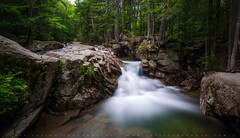 Wide Waterfall At The Basin (lestaylorphoto) Tags: travel summer usa green nature america waterfall nikon newengland newhampshire whitemountains nationalforest leslie taylor d610 thebasin 1635mm     lestaylorphoto