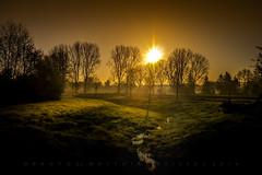 Ortus (matthiasstiefel) Tags: trees shadow mist yellow fog sunrise bayern bavaria dawn star spring stream meadow frstenfeldbruck bach gelb sonnenaufgang enchanted frhling eichenau