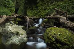 () (Onejoshuatree) Tags: mountain green nature japan landscape waterfall  nippon     hyogo     westjapan  shinonsentyo shiwagarawaterfall