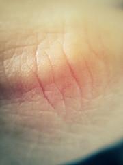 FullSizeRender (42) (sswartz) Tags: abstract macro closeup flesh skin wrinkles